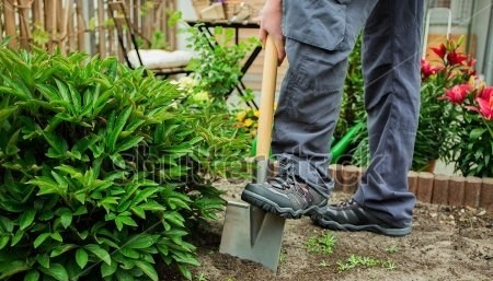 stock-photo-a-young-man-working-in-the-garden-278024135-e1499592604423.jpg